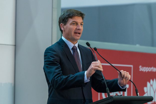 Minister Taylor speaking at the CeBIT conference yesterday.